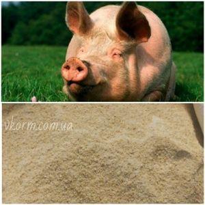БМВД 15% для свиней, Фініш