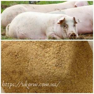 Високобілковий Концентрат 15% для свиней (гровер)