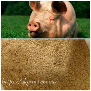 Високобілковий Концентрат 10% для свиней (фініш)