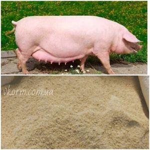 БМВД 15% для супоросних свиноматок